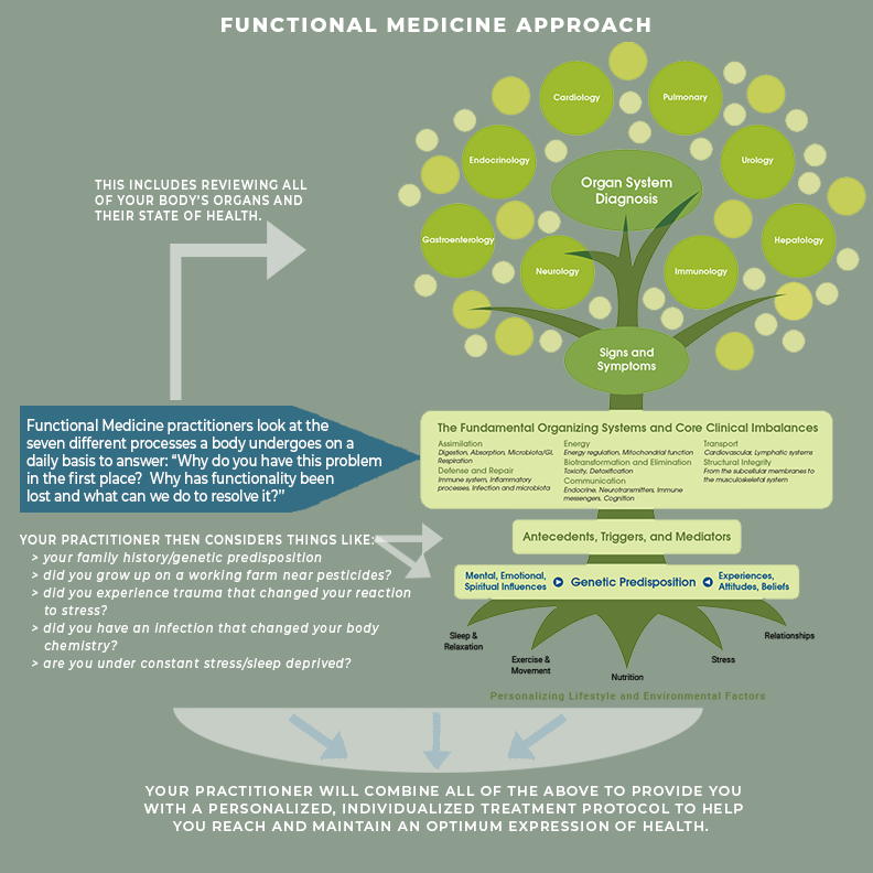Defining Functional Medicine and its Benefits